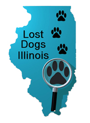 lost dogs illinois