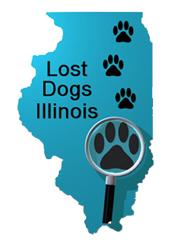 lost dogs illinois